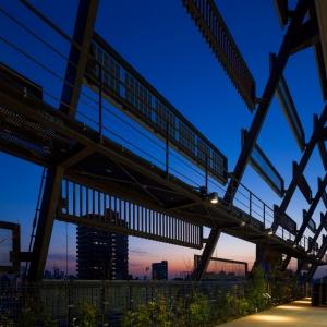 148_8階 エコミューゼ(夜景).jpg